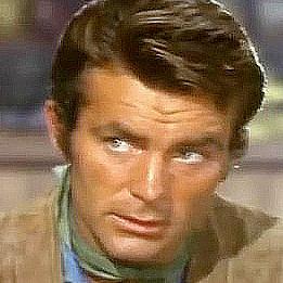 Robert Conrad as Chris Barrett in The Bandits (1967)
